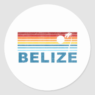 Retro Palm Tree Belize Classic Round Sticker