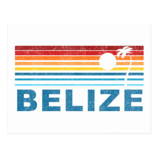 Retro Palm Tree Belize Postcard