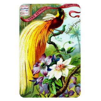 Retro Paradise Bird Magnet