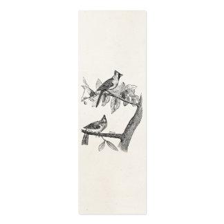 Retro personalizada pájaro del pájaro cardinal del tarjeta personal