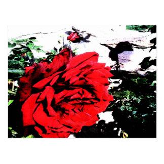 Retro Rose 03 Postcard