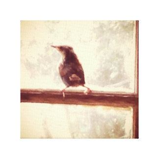 Retro Style Baby Bird in Window Stretched Canvas