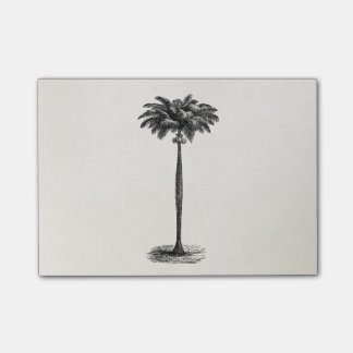 Retro Tropical Island Palm Tree Black and White Post-it® Notes