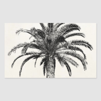 Retro Tropical Island Palm Tree in Black and White Sticker