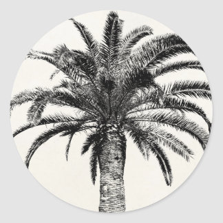 Retro Tropical Island Palm Tree in Black and White Round Stickers