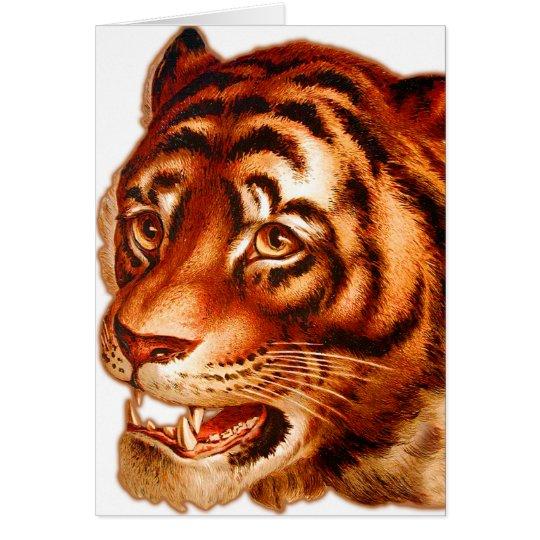 Retro Vintage Advertising Tiger Tiger's Eye Card