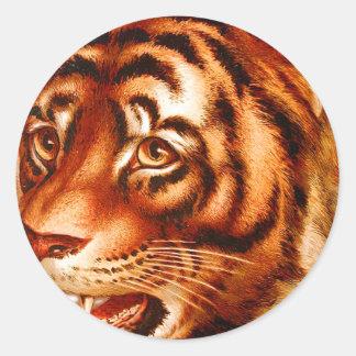 Retro Vintage Advertising Tiger Tiger's Eye Classic Round Sticker