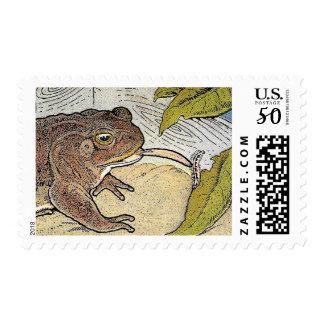 Retro Vintage Book Frog Illustration Postage Stamp