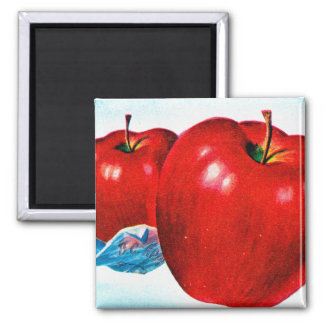 Retro Vintage Kitsch Apple Art B.C. Apples Magnet