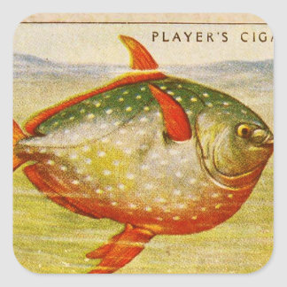 Retro Vintage Kitsch Cigarette Card Opah Fish Stickers