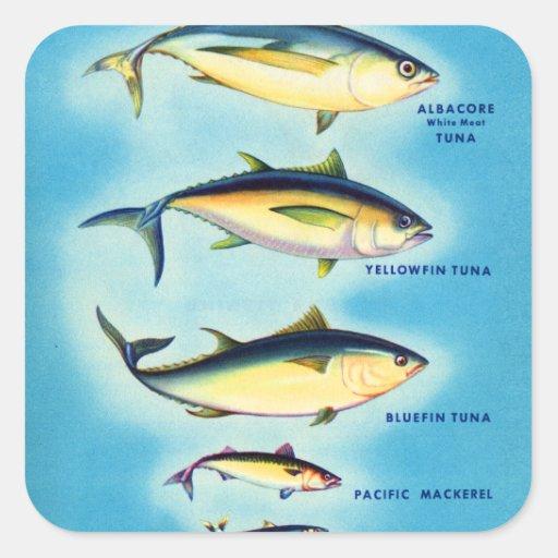 Retro vintage kitsch fish blue fin tuna fish art square for Blue fin fish