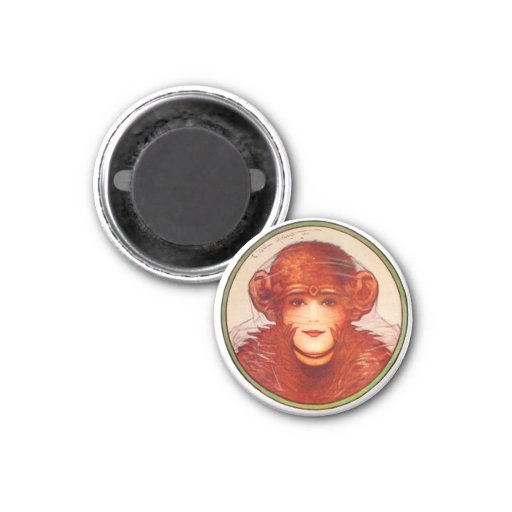 Retro Vintage Kitsch Illusion Chimp or Woman? Fridge Magnets