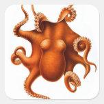 Retro Vintage Kitsch Illustration Octopi Octopus Sticker