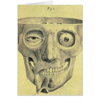 Retro Vintage Kitsch Medieval Skull Illustration Greeting Card