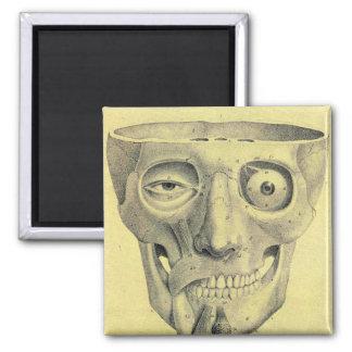 Retro Vintage Kitsch Medieval Skull Illustration 2 Inch Square Magnet
