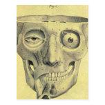 Retro Vintage Kitsch Medieval Skull Illustration Post Card