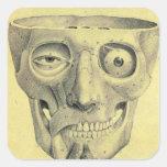 Retro Vintage Kitsch Medieval Skull Illustration Stickers