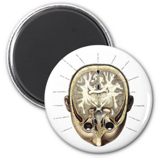 Retro Vintage Kitsch Monster Anatomy Exposed Brain Magnet