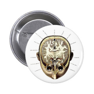 Retro Vintage Kitsch Monster Anatomy Exposed Brain Pinback Button