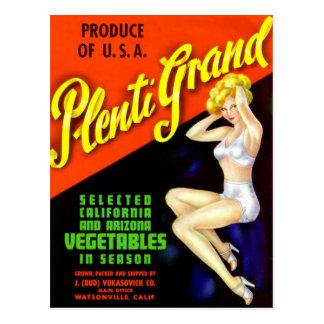 Retro Vintage Kitsch Pin Up Label Plenti Grand Postcard