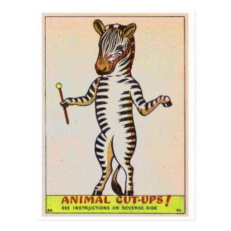 Retro Vintage Kitsch Walking Zebra Childrens Book Postcard