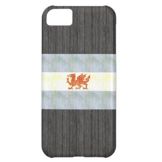 Retro Vintage Patagonia Flag Case For iPhone 5C