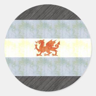 Retro Vintage Patagonia Flag Sticker