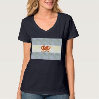 Retro Vintage Patagonia Flag T-Shirt