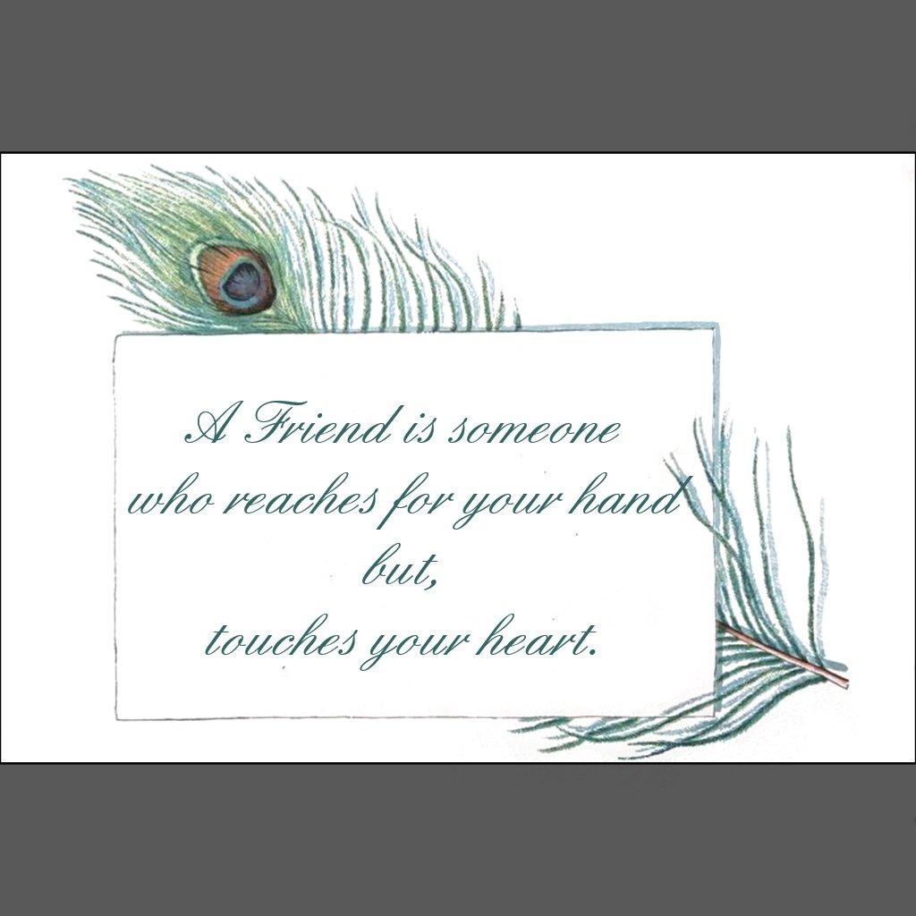 retro_vintage_peacock_feather_friendship_quote_poster-r28624b34613f40b9b399fb0435f2005f_ioli3_8byvr_1024.jpg