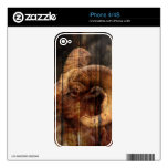 Retro vintage rusticcountry woodgrain mountain ram decal for the iPhone 4