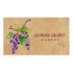 Retro Vintage Vineyard Harvest Grapes Winery Business Card Template