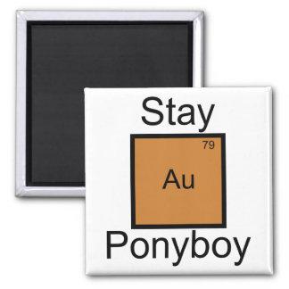 Retruécano del elemento de Ponyboy del oro de la Imán Cuadrado
