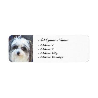 Return Address Cute Dog Label