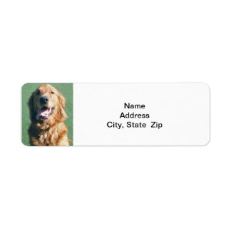 Return Address Label, Golden Retriever Label