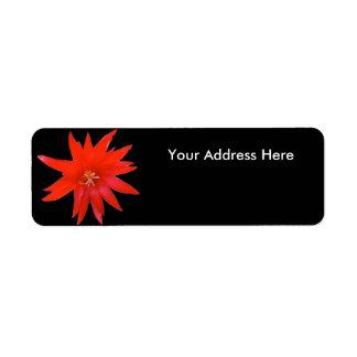 Return Address Labels - Easter Cactus