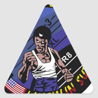 Return of the Most Awesomely Bad  Military Patches Triangle Sticker