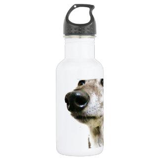 Reuben Claws 18oz Water Bottle