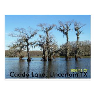 Reunión 2009 058, lago Caddo, TX incierto Tarjetas Postales