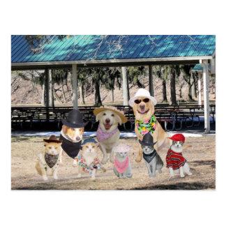 Reunión de familia divertida postales