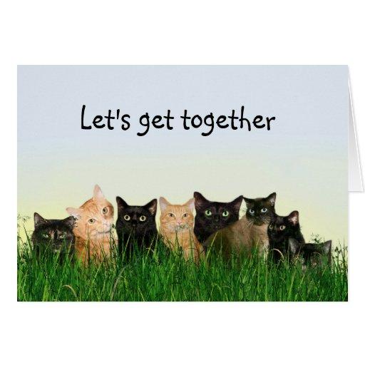 Reunión de la familia de gato tarjeta de felicitación