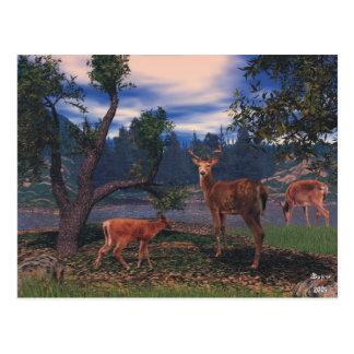 Reunión de los ciervos tarjetas postales