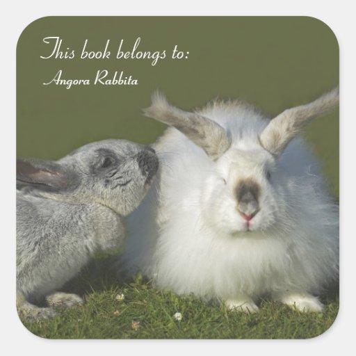 Reunión de los conejos - conejito gigante del colcomanias cuadradass
