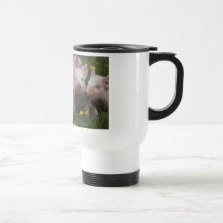Reunión de los tres pequeños cerdos taza de café