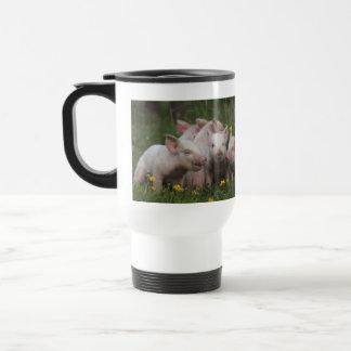 Reunión de los tres pequeños cerdos taza de viaje