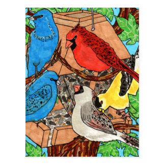 Reunión del alimentador del pájaro postales