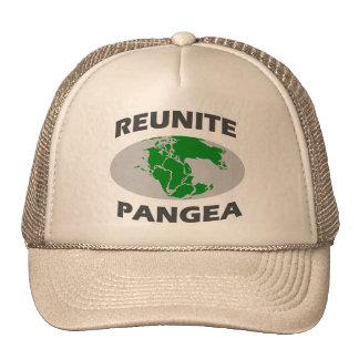 Reunite Pangea Trucker Hat