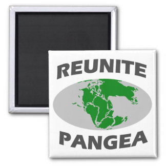 Reunite Pangea Fridge Magnets