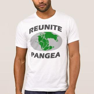 Reunite Pangea Tees