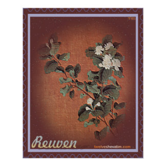 Reuven Print
