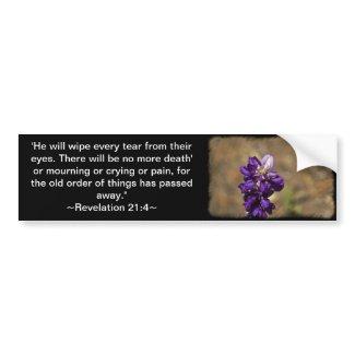 Revelation 21:4